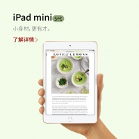 iPad mini5  7.9raybet官网